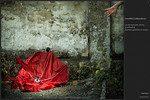 Il percorso (4) - L'inutilità - L'abbandono -Th - storytelling